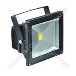 Eagle Waterproof IP65 Black Flood Lights - Lamp Type 30W LED