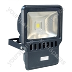Eagle Waterproof IP65 Black Flood Lights - Lamp Type 100W LED
