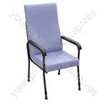 Longfield Lounge Chair - Colour Blue