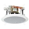 PA Loudspeaker - Pa Ceiling Speaker