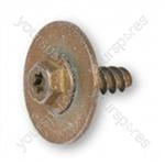 Motor Retaining Screw